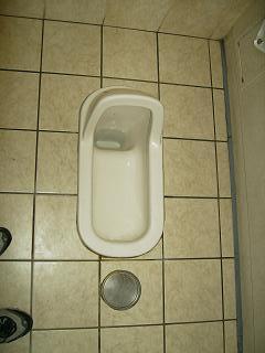 Asian-style toilet. Yes, the ladies' toilet