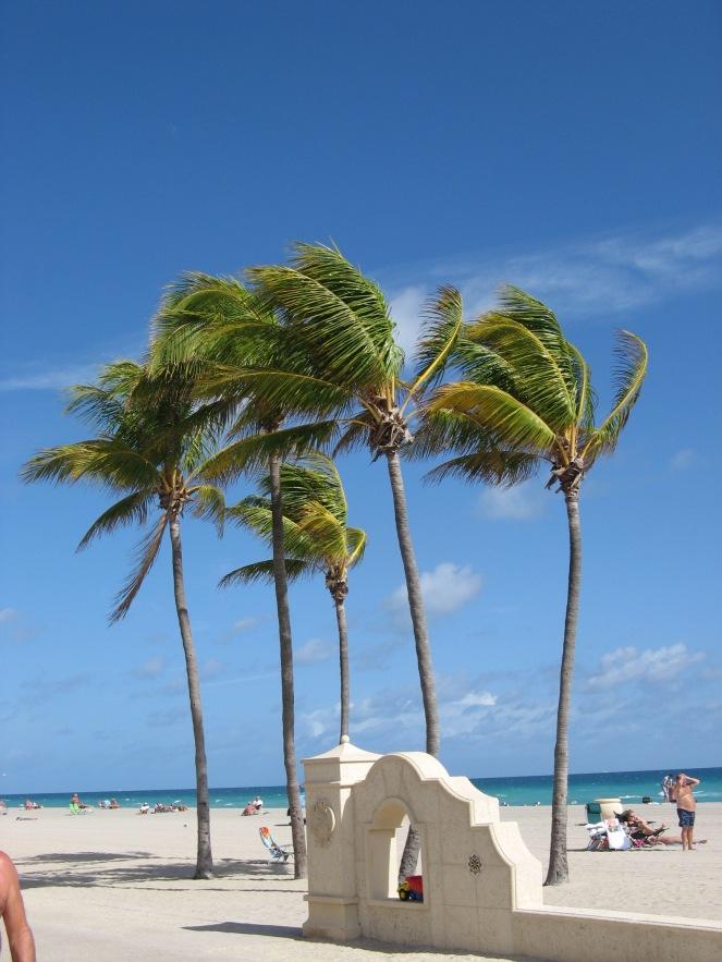 Bahamas2008 362