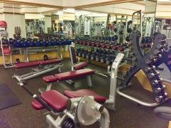 Free weights, even a deadlift bar